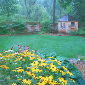 Garden maintenence